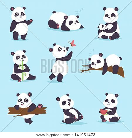 Panda cartoon character in various expression. Animal white cute china black panda bear giant mammal fat wilderness rare. Lying woods panda bear eating bamboo china wild animals vector character.