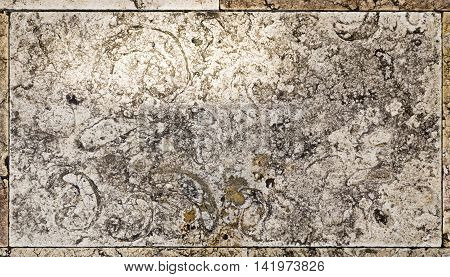 QUELUZ, PORTUGAL - October 26, 2015: Detail of a fossiliferous limestone slab profusely covering large parts of the floor of the Palace of Queluz on October 26, 2015 in Queluz, Portugal