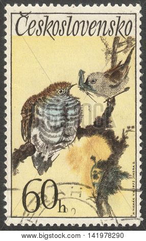 MOSCOW RUSSIA - CIRCA MAY 2016: a post stamp printed in CZECHOSLOVAKIA shows a Cuculus canorus bird the series
