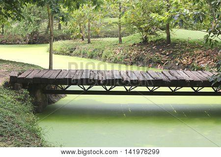wooden bridge across the canal in the garden.