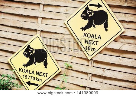 Information board with the inscription about koala in ZOO. Directional guide sign. Endangered animals species.