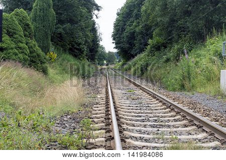 Railroad among woodland. woodland scenery with railroad track, railway