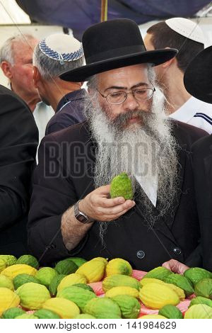 JERUSALEM, ISRAEL - SEPTEMBER 18, 2013: Traditional market before the holiday of Sukkot. The religious Jew with a long gray beard and sidelocks very carefully examines ritual citrus - etrog