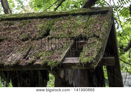 close-up top of old abandoned wooden gate at the park