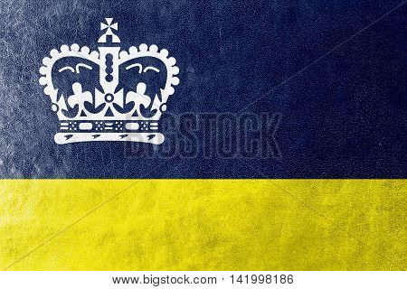 Flag Of Regina, Canada, Painted On Leather Texture