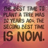 Inspirational Typographic Quote - The best time to plant a tree was 20 years ago, the second best ti poster