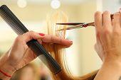 Female Hairdresser Hold In Hand Lock Of Blonde Hair poster