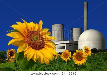 Nuclear power plant behind a sunflower field