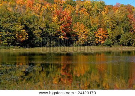 Colorful Reflections In Chequamegon-nicolet National Forest, Wisconsin, Usa