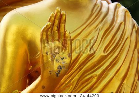 Hands Of The Buddha