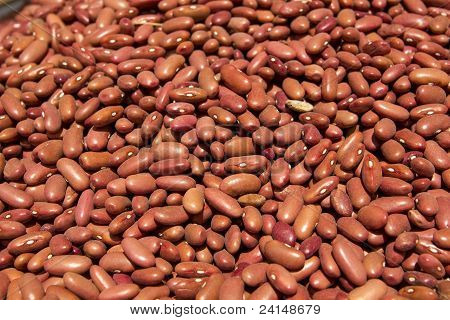 Red Kidney Beans Closeup