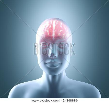 Cérebro quente