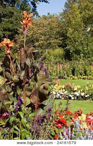 Formal Gardens, Bury St Edmunds, Suffolk