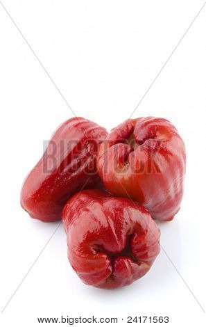 Thai Fruit the Rose apples or chomphu on white background