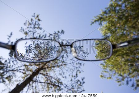 Look Through The Glasses