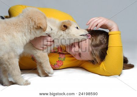Two Puppies Play With Girl