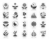 Garden Silhouette Icons Set. Monochrome Web Sign Kit Of Flower. Plant Pictogram Collection Includes  poster