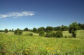 Rolling Hills And Meadows Under A Clear Blue Sky At The Perryville Battlefield State Historic Site C poster
