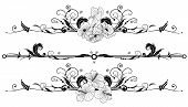 image of art nouveau  - set of the vector floral banners with flowers of hibiscus and poppy - JPG