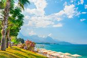 Beautiful Beach With Green Trees In Kemer, Turkey. Summer Landscape, Travel And Vacation poster
