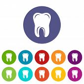 Single Tooth Icon. Simple Illustration Of Single Tooth Vector Icon For Web poster