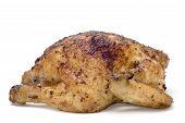 Roasting Chicken On White