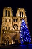 Christmas Tree In Paris, In Front Of The Notre-dame-de-paris Cathedral In The Winter At Night poster
