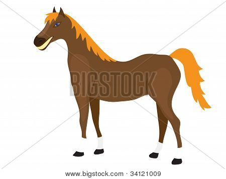 Horse Stands