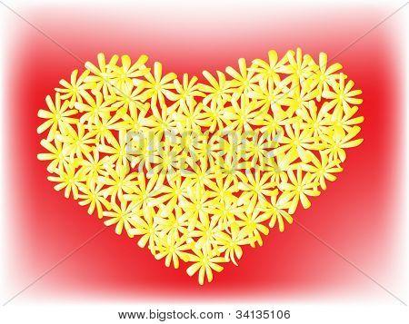 camomile heart