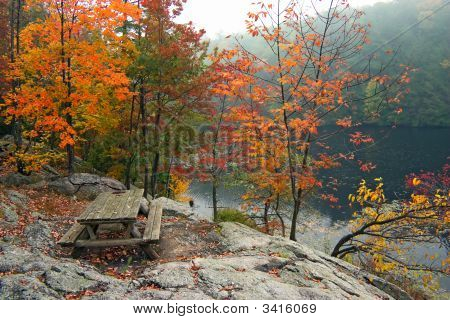 Picnic Table In Fall