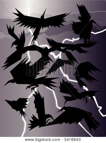 Crows In A Storm