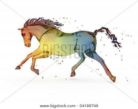Rainbow water running horse over white