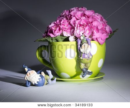Pink Fushia Hydrangeas