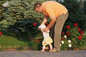 stock photo of father daughter  - Father teaches her little daughter to walk on the background of rose bushes - JPG