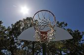 Basketball Hoop With The Sun And Trees In Background