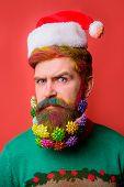 Serious Bearded Man In Santa Hat. Christmas Beard Decorations. Bearded Man In Santa Hat With Decorat poster