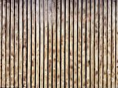 Wooden Thin Slats With Traces Of Firing. Thin Vertical Slats.wooden Background. poster