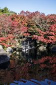 Koko-en Garden With Fall Foliage Colors Near The Small Pond In Himeji Japan. Here Is Very Famous To  poster