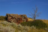 stock photo of scoria  - A large chunk of scoria rock sits on a hill beside a dead tree - JPG