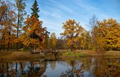 picture of tsarskoe  - Catherine - JPG