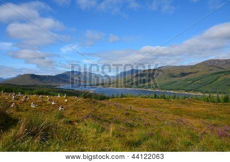 Loch Loyne, Scotland