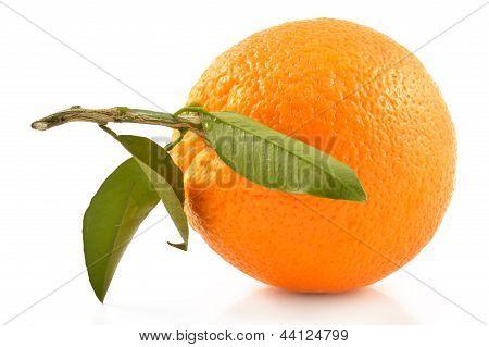Juicy Orange On A White Background
