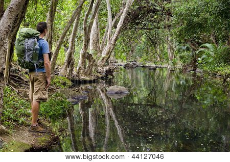 A Hiker and Tropical River