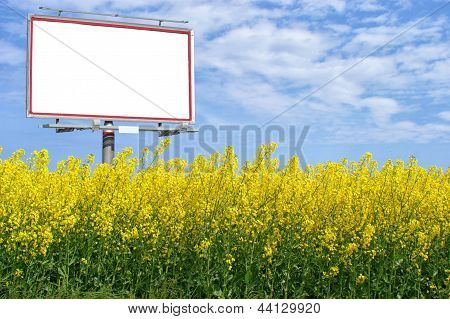 Blank White Billboard In A Rapeseed Field