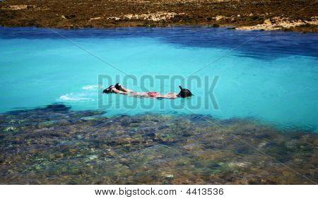 Swimming In Crystalline Clear Waters In Maragogi Brazil