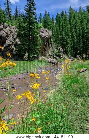 New Mexican Alpine Landscape With River And Flowers