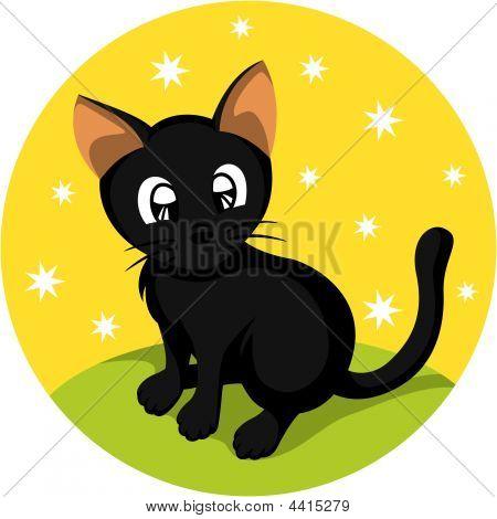 Black Little Kitten