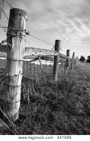 Colter Fence Bw