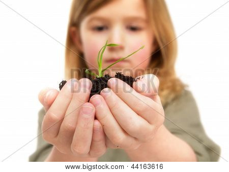 Portrait Of A Little Girl Holding Life In Hands