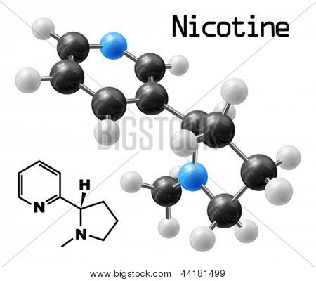 structural model of nicotine molecule